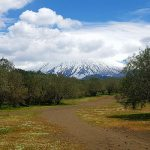 escursioni-etna-ovest-neve