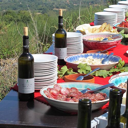 etna-walking-wine