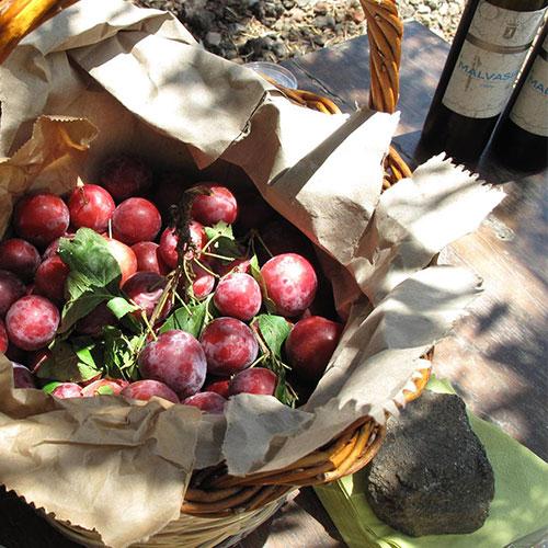 malvasia-frutta