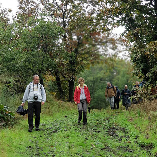 walking-wine-trekkers